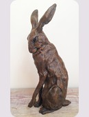 25. Well Groomed Hare