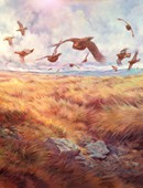 09. Red Grouse Over Mural